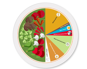 A graphic showing a plate of food that would reflect planet health.