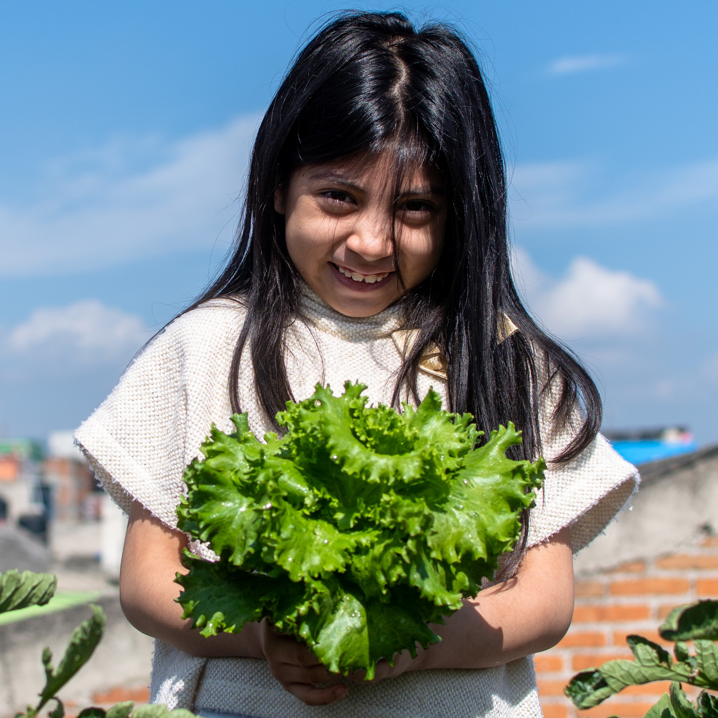 young child in a garden holding lettuce