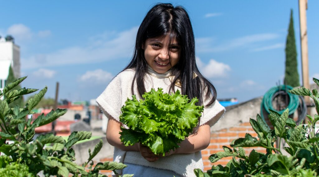 young girl holding lettuce in a garden